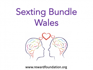 Sexting Bundle Wales